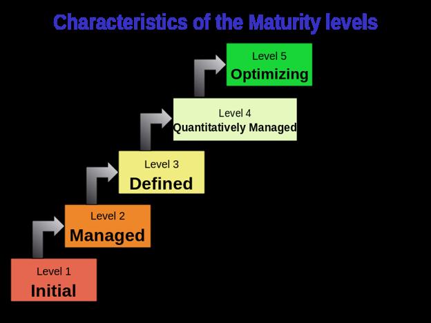 Characteristics of the Maturity levels